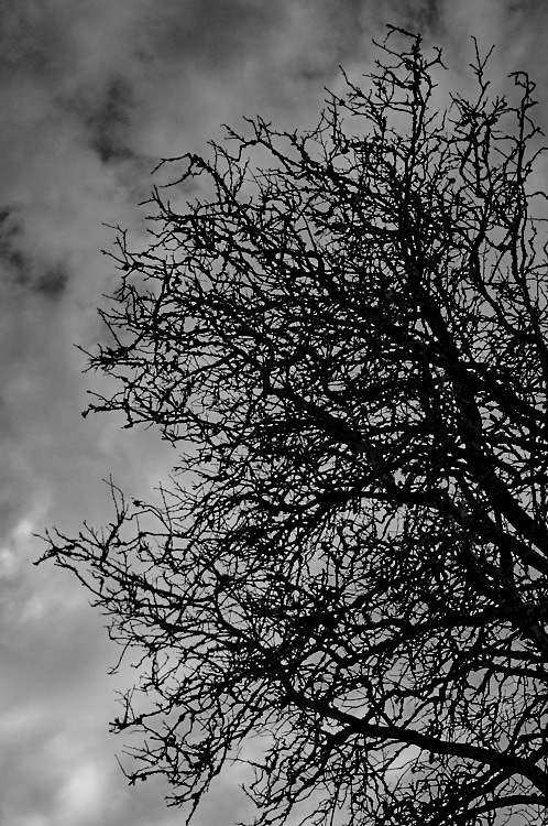 overcast-4-apr-2015-2