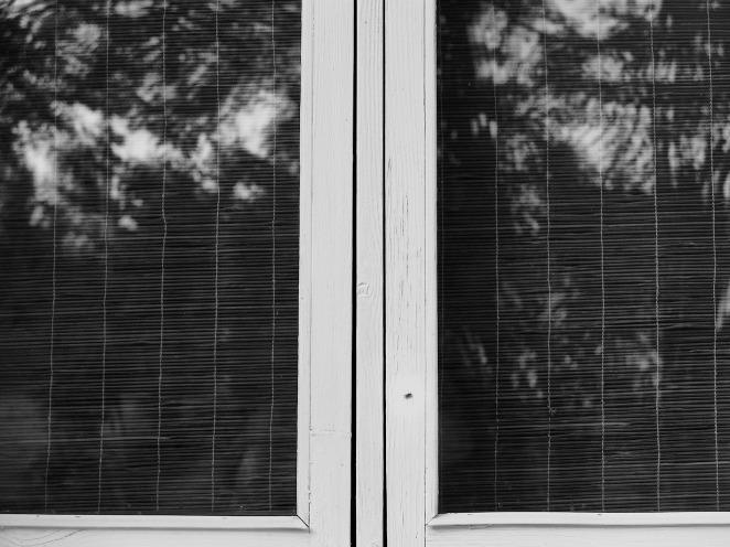 window-2-aug-2015
