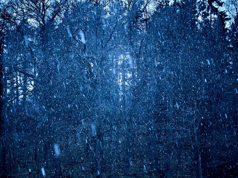 snowfall-24-april-2016